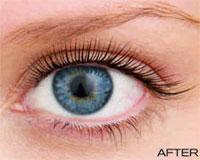a652256afa3 LVL Lashes | Beauty Salon Bolton | Beyond Beauty